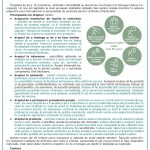 Newsletter_ED Maramures_Noiembrie 2015_Page_3