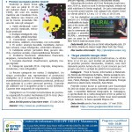 Newsletter_ED Maramures_Aprilie 2016_Page_4