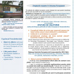 Newsletter_ED Maramures_August 2016_Page_1