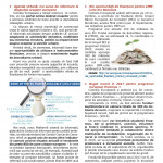 Jurnal CDIMM_oct 2016-ED Maramures_Page_3